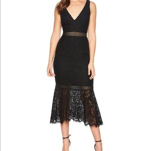 Bardot Sienna Lace Trumpet dress